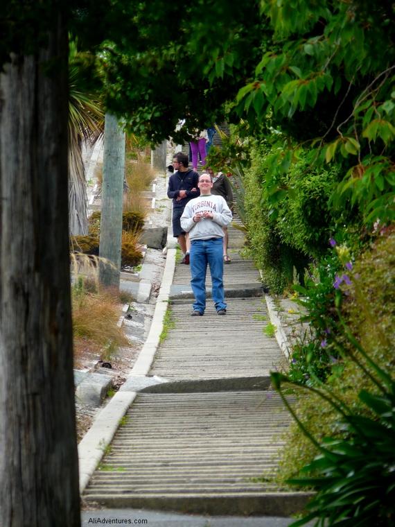 Baldwin Street, Dunedin steepest street in the world