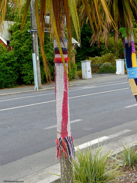 tree socks on Baldwin Street, Dunedin steepest street in the world