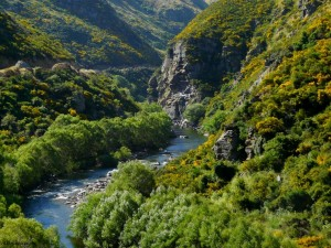 Taieri Gorge Railway in Photos