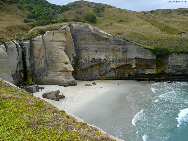 day trips from Dunedin, New Zealand - Tunnel Beach
