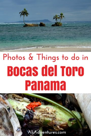 Bocas del Toro, Panama is a popular place to visit because of its pretty beaches, adventure activities, and laid back vibe. Here's what we did in Bocas.