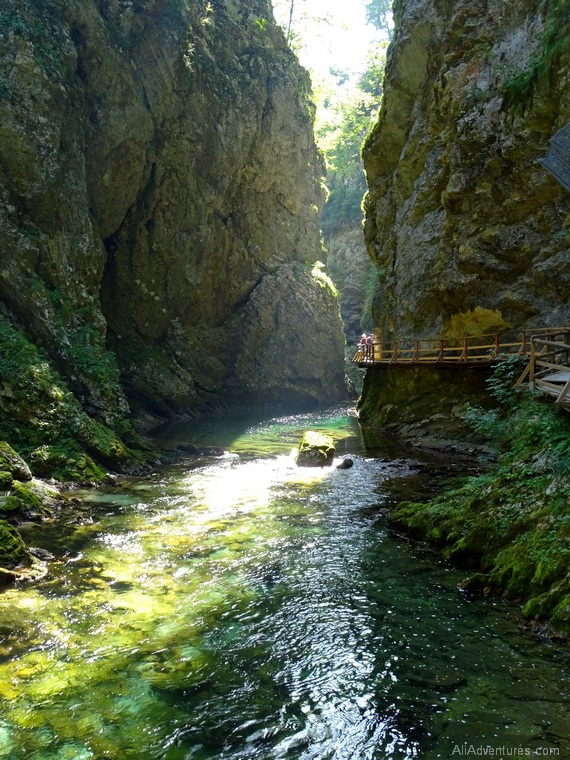 things to do in Slovenia - hiking Vintgar Gorge