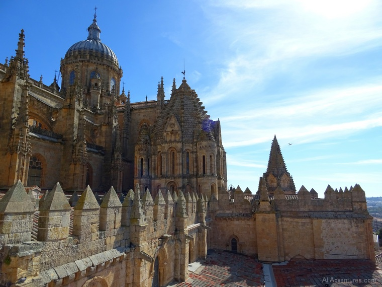 Salamanca cathedral views from above