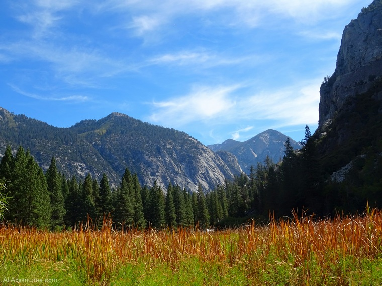 2 days in Kings Canyon meadow