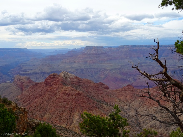 Grand Canyon itinerary Desert Tower viewpointss