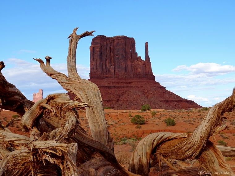 Navajo tour things to do in Monument Valley