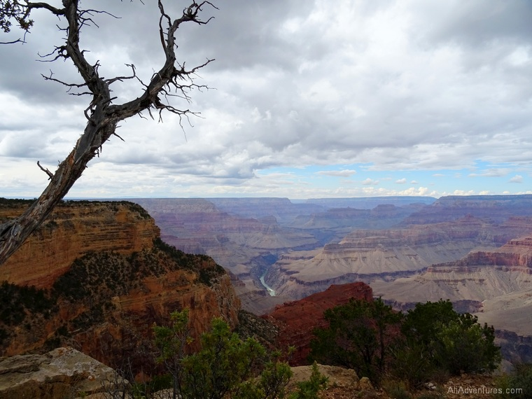 things to do at the Grand Canyon rim trail views