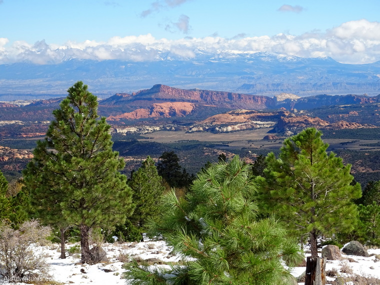 Scenic Hwy 12 Utah