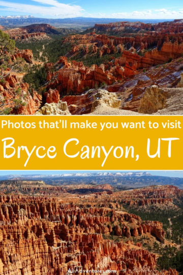 We spent 1 day in Bryce Canyon National Park, and even though it was cold, this is one park you must add to your USA or Utah road trip itinerary. Check out these pictures to see how gorgeous Bryce Canyon really is. #brycecanyon #nationalparks #usa #utah #traveltips #roadtrip