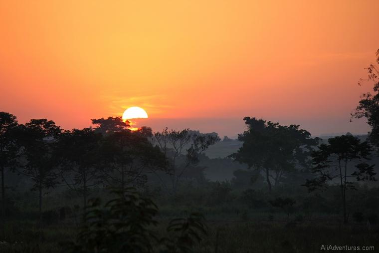 Uganda safari sunrise