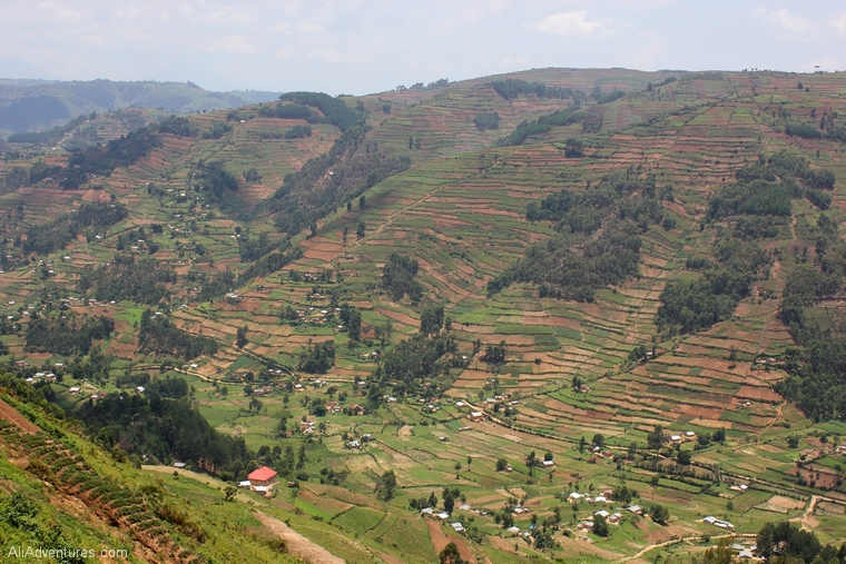 Bwindi Impenetrable Forest Uganda safari valley view