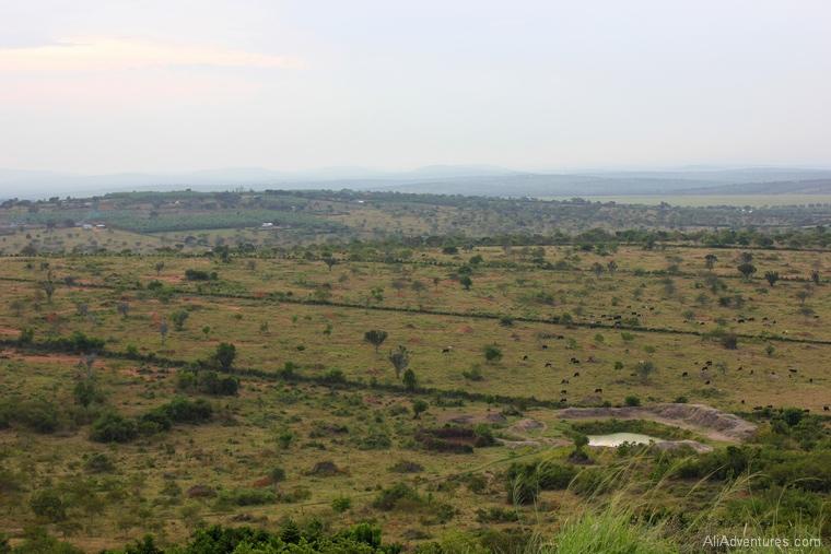 Lake Mburo Uganda safari view from lodge