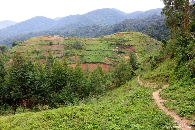 Uganda safari Bwindi Impenetrable Forest village tour