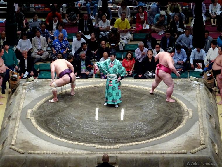 Japan trip budget Tokyo sumo wrestling tournament